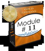 Flute Lessons Module 11