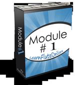 Flute Lessons Module 01