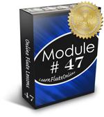Flute Lesson Module BOX47