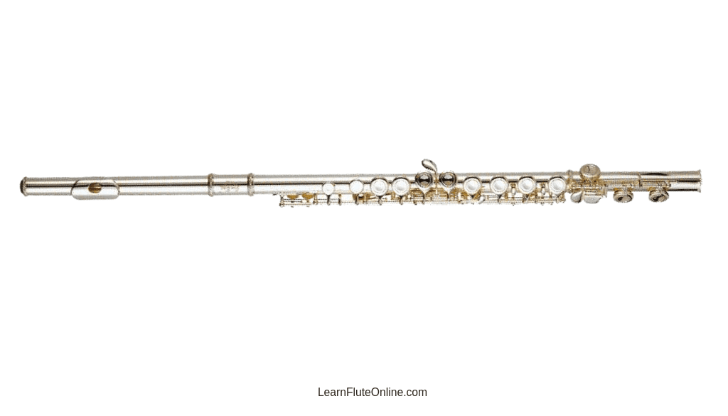 How to Know the Condition of My Flute