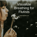 Visualize breathing for flutists