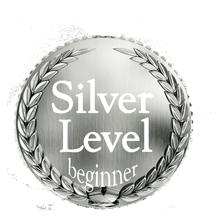 Silver Level Flute Lessons Medallion